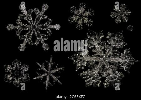 Snow Crystals, Snowflake magnified under microscope, Lillehammer, Norway - Stock Photo