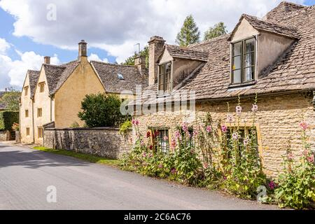 Hollyhocks flowering outside old stone cottages in the Cotswold village of Naunton, Gloucestershire UK - Stock Photo