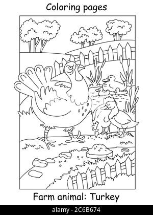 Vector coloring pages with funny angry turkey walking on the farm. Cartoon contour illustration isolated on white background. Stock illustration for c - Stock Photo