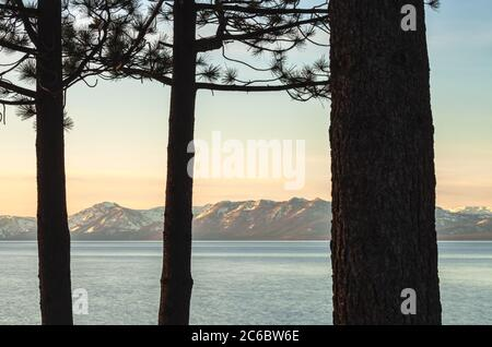 Scenic view of the Lake Tahoe at sunrise with the silhouette of pine trees in foreground, California, USA. - Stock Photo