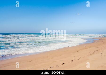 Sunny sandy beach and clear blue sky on background, California Coastline