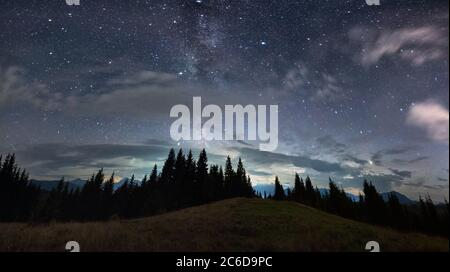 Magnificent panoramic view of night sky over grassy hill in coniferous wood. Fantastic landscape of mountain forest with tall conifer trees under majestic blue sky with stars. Concept of nature. - Stock Photo