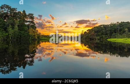 Panorama of a sunset in the Amazon Rainforest which comprise the countries of Brazil, Bolivia, Colombia, Ecuador, Guyana, Peru, Suriname and Venezuela - Stock Photo