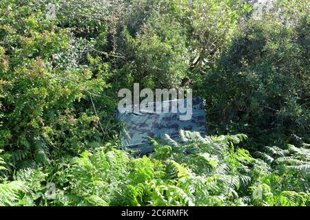 A strange piece of fabric covering a pallet placed and secured into the side of a hedge at the roadside in this quiet location near a farm. - Stock Photo