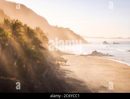 Early morning sun filters through palms near El Calvario beach on the Costa Grande of Guerrero, Mexico.