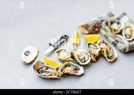 Fresh opened Oysters close-up on gray background with sliced lemon and ice. Healthy sea food. Gourmet food. Flat lay, top view, mockup, overhead