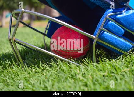 Cricket halmet and a ball on a green grass. Helmet protects batsman from fast balls which may otherwise cause harm to playing person. - Stock Photo