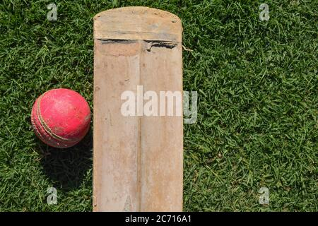 Cricket bat and ball. Cricket is famous sport. - Stock Photo