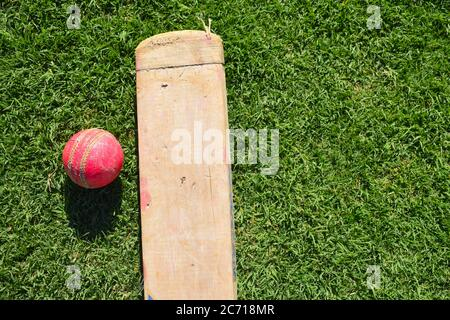 Cricket bat and ball isolated on a playground. - Stock Photo
