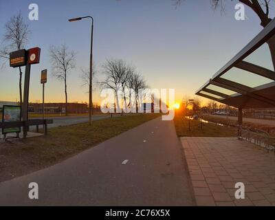 asphalted and tree lined avenue at sunset in zaanse schans in netherlands - Stock Photo