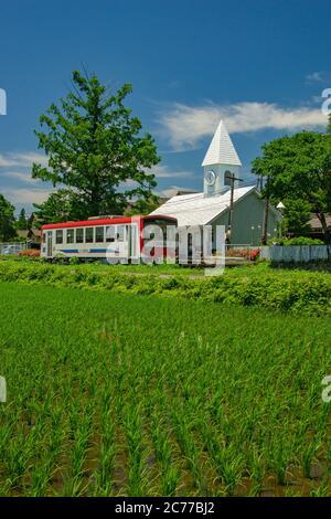 Fresh Green in Minamiaso Village, Kumamoto Prefecture, Japan - Stock Photo