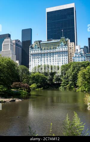 Central Park with the New York City Midtown Skyline in background, USA