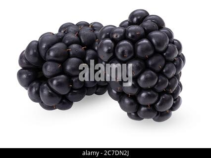 Blackberry isolated on white background. Organic ripe berry. Side view. Clipping path. Professional studio macro shot. Two fresh summer wild berries - Stock Photo