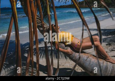 A young woman laying on the trunk of a palm tree on Zoni Beach in Culebra, Puerto Rico, with the leaves of a palm tree in the foreground