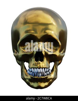 human golden skull isolated on white, front view, 3d render