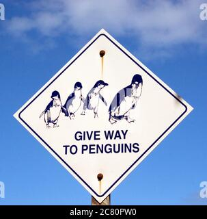 Give Way to Penguins road warning sign, Victoria, Australia, Australasia - Stock Photo