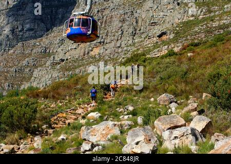 Walking up to the top contour path on Table Mountain.