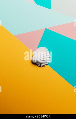 White sea shell on a geometric colorful abstract background, Summer time concept