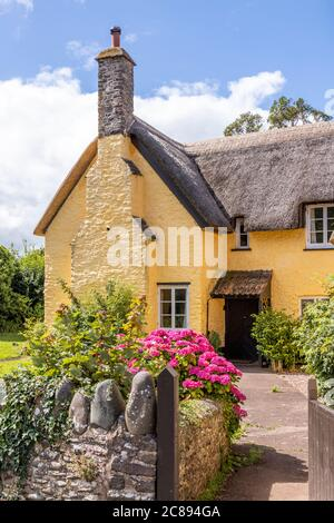 A traditional thatched farmhouse on Exmoor National Park in the village of Bossington, Somerset UK