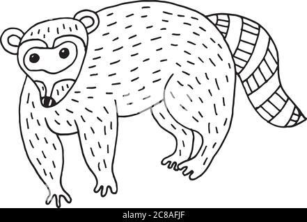 Forest animal raccoon doodle cartoon simple illustration. kids d - Stock Photo