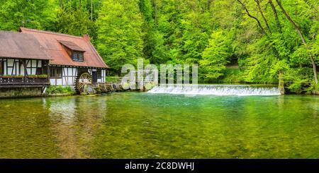 Germany, Baden-Wurttemberg, Blaubeuren, Rustic house on forest riverbank in spring