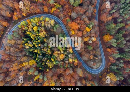 Germany, Bavaria, Drone view of winding country road cutting through autumn forest inSteigerwald