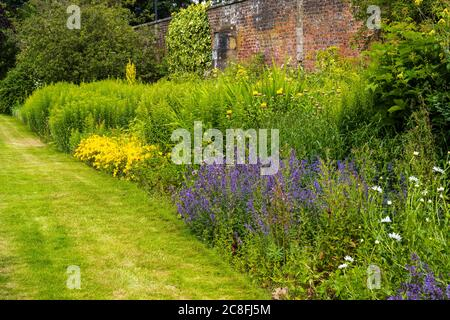 Herbaceous border in walled Garden at Falkland Palace in village of Falkland in Fife, Scotland, UK - Stock Photo