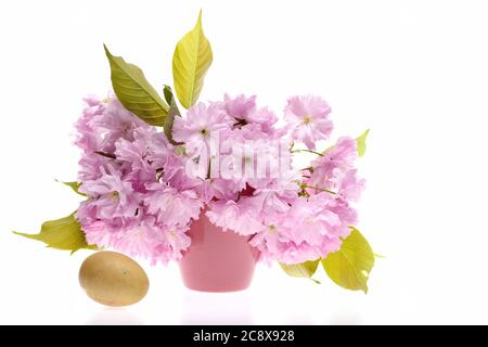 Sakura flowers in bunch near golden egg, isolated on white background. Concept of spring and Easter day - Stock Photo