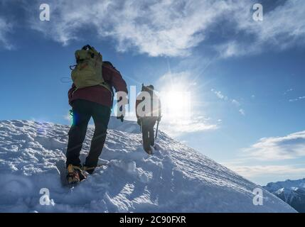 Italy, Alps, Monte Rosa, Climbers reaching snowcapped mountain top