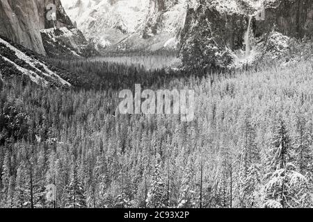 Yosemite Valley after a winter storm, Yosemite National Park, California USA - Stock Photo