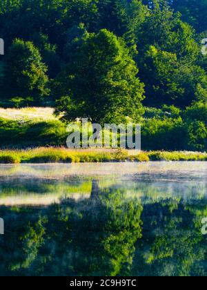 Preserved nature natural environment morning bright mist fog above water surface of Lake Mrzla vodica in Croatia Europe - Stock Photo