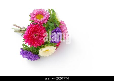 isolated flower lies on white background