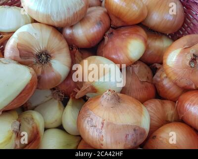 Basket of freshly picked organic onions - Stock Photo