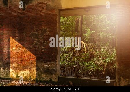 An abandoned interior of ancient fort, view from inside looking out, sunbeam shines through young green forest and ruined window into an old brick wal