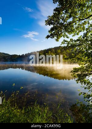 Morning bright mist fog above water surface of Lake Mrzla vodica in Croatia Europe countryside country-side gorgeous & stunning & marvelous Stock Photo