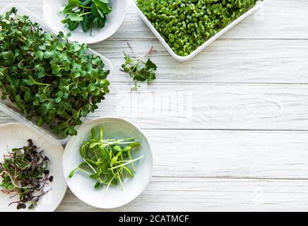 Assortment of micro greens on white wooden  background, copy space, top view. red radish, green peas, sunflower and other sprouts in bowls. Healthy li Stock Photo