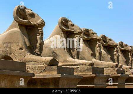 A row of stone carved ram statues at the entrance to the Karnak Temple in Luxor, Egypt. The Karnak Temple is also know as the Temple of Amun. - Stock Photo