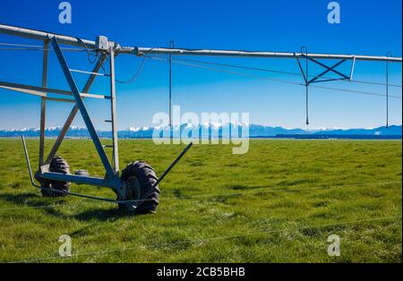 New Zealand Countryside Scenes: Irrigation Infrastructure: Centre-pivot Irrigator watering a circular or semi-circular paddock. - Stock Photo