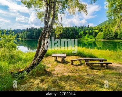 Wooden benches bench resting place Green forest pretty beautiful preserved nature natural environment in lake Mrzla vodica in Croatia Europe