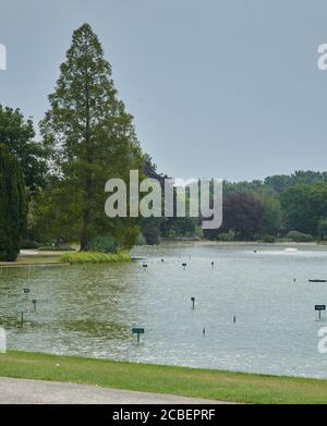 Heavy thunderstorms and torrential rain at the hight of summer Ul basking in 30 degree heat, East Yorkshire, England, UK, GB. Stock Photo