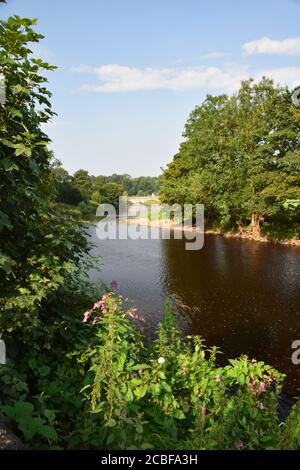 The river Ribble at Sawley Lancashire in early morning summer sunshine - Stock Photo