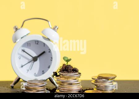 coins stack and alarm clock on yellow background.Seedlings on coins in glass jars and red alarm clocks on coins. savings, financial investments