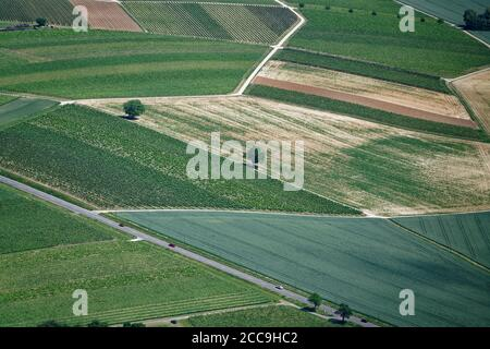 Driving through the Rhine Valley shows the dimensions of the vine yards. But there are also some other fields between. - Stock Photo