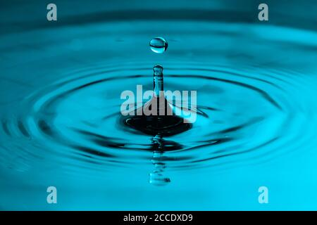 Perfect water drop splashing into smooth water causing ripples in a calm surface