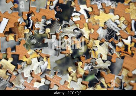 Unassembled puzzle concept idea problem game strategy jigsaw. Connect missing fit part leisure - Stock Photo