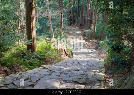 Wakayama, Japan - Daimonzaka slope on Kumano Kodo (Nakahechi Route) in Nachikatsuura, Wakayama, Japan. It is part of the UNESCO World Heritage Site.