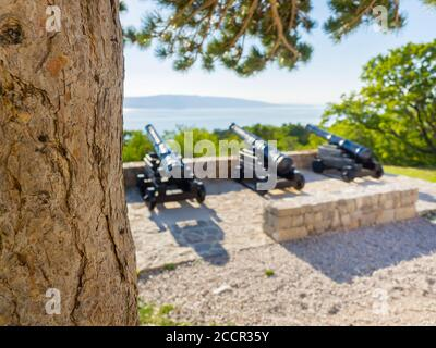 Cannon before near Nehaj tower in Senj in Croatia Europe guns are intentionally blurry in defocused background focus on tree trunk - Stock Photo