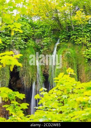 National park Plitvice lakes in Croatia Europe water flowing waterflow waterfall scenic scenery