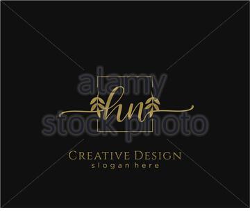 Initial HN beauty monogram and elegant logo design - Stock Photo
