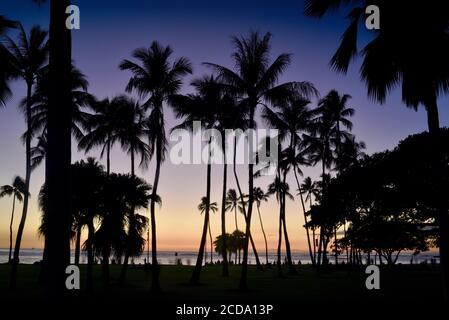 Spectacular and colorful sunset, silhouetted palm trees, on beach in resort neighborhood of Waikiki Beach, Oahu Island, Honolulu, Hawaii, USA - Stock Photo